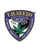 T.H Seeds Regular
